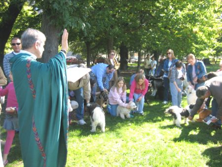 Feast of St. Francis of Assisi, Blessing of the Animals (in Arrigo Park)